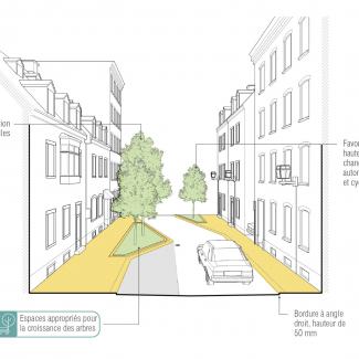 Coupe schématique du réaménagement d'une rue résidentielle.