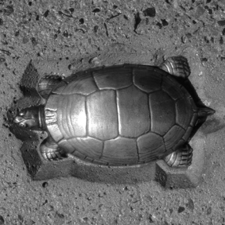 Relief sculpture of turtle, 20 of which greet visitors as they cross the bridge and reference the natural world which once inhabited the mouth of the Humber River.