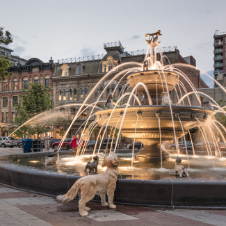 Photo of Berczy Park's fountain, with its dogs and the golden bone on top
