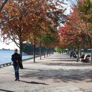 Waters Edge Promenade