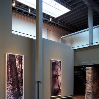 Corkin Gallery 2