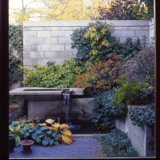 Laneway House View-of-Courtyard