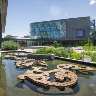 Centre sur la biodiversité de l'Université de Montréal